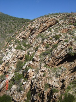 Folded rocks in Waaipoort