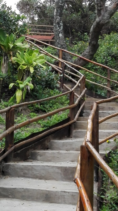 Stairway to the beach at Trennery's Hotel